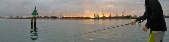 Port of Tauranga. The hub of Tauranga, right amongst the city.
