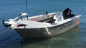 KingTide Salt Fly - Guided Salt water fly fishing. New Zealand.