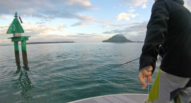 The Mount. Bay of plenty icon and home to King Tide Salt Fly. Guided salt water fly fishing. New Zealand