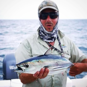 Little speedsters. Skipjack tuna come in close to the beach over summer and are a great target for the salt water fly enthusiast.