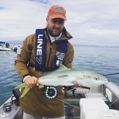 Damn good fun catching kingfish over and over.