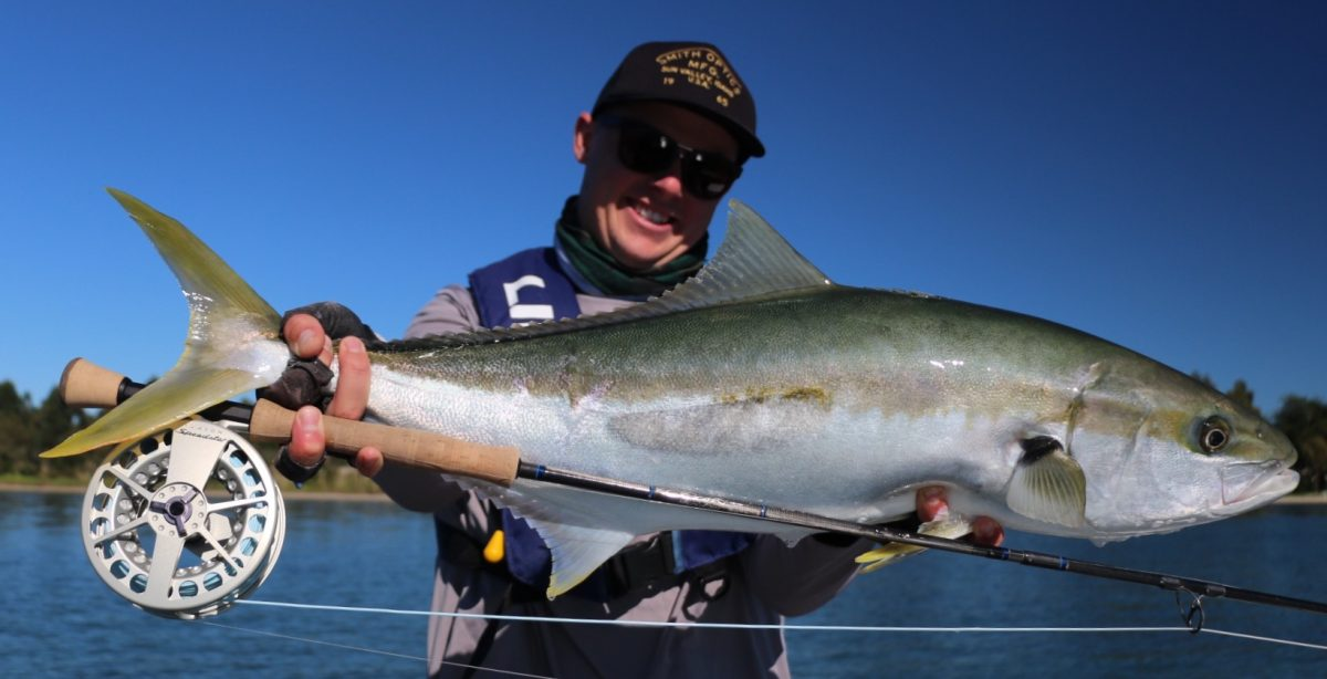 Salt water fly fishing guide. Tauranga, New Zealand
