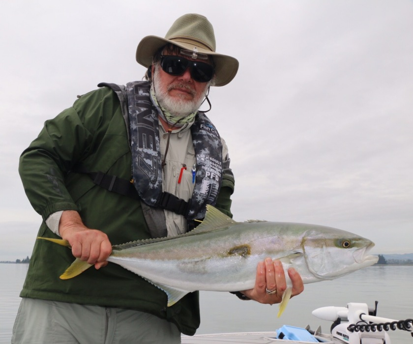 Kingfish, ray rider, tag, salt water fly, tauranga, bay of plenty, new zealand