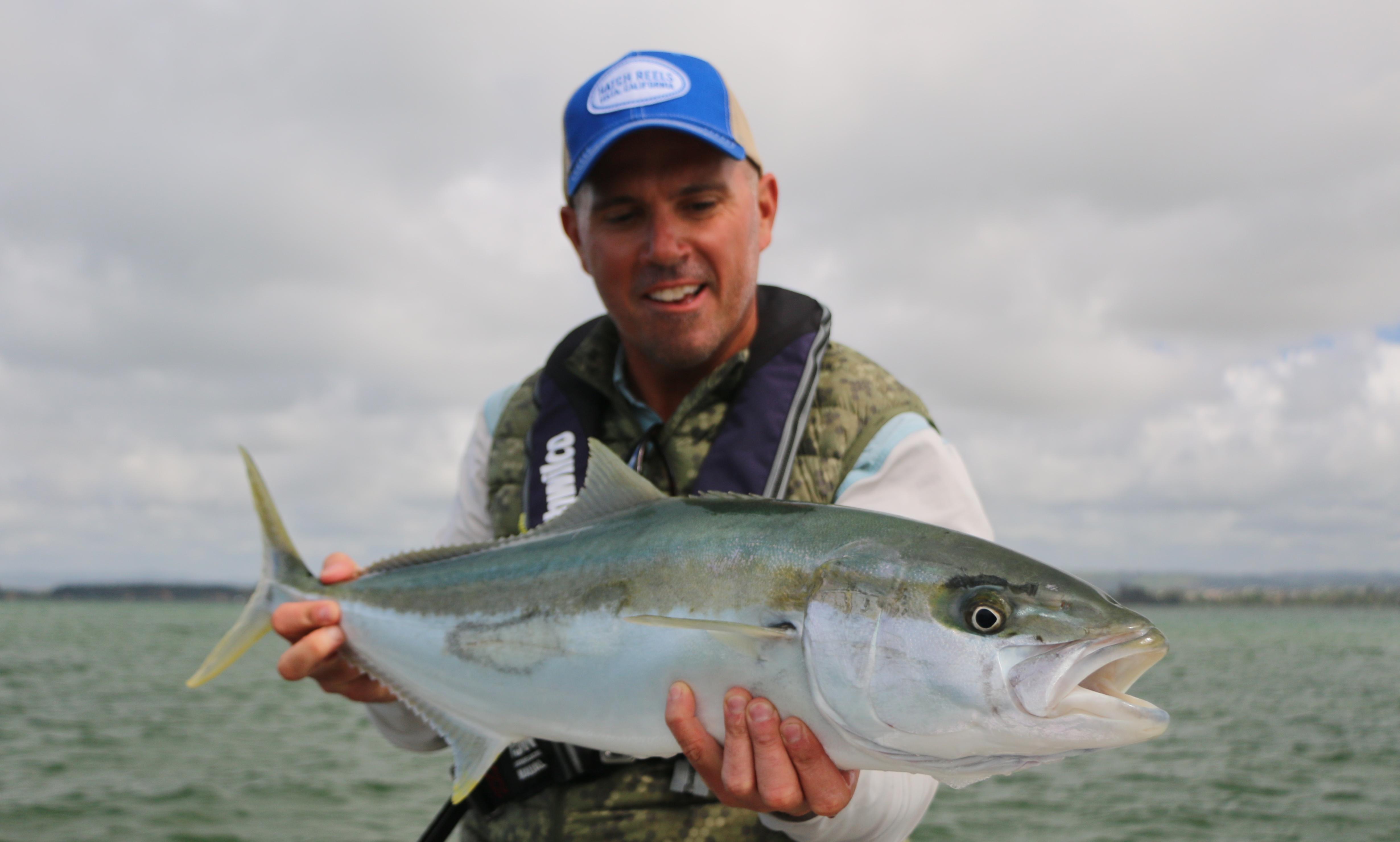Tauranga, flats, kingfish, fly rod, salt water, fishing, yellowtail