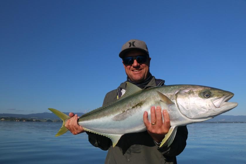 kingfish, new zealand, tauranga harbour, flats, fishing