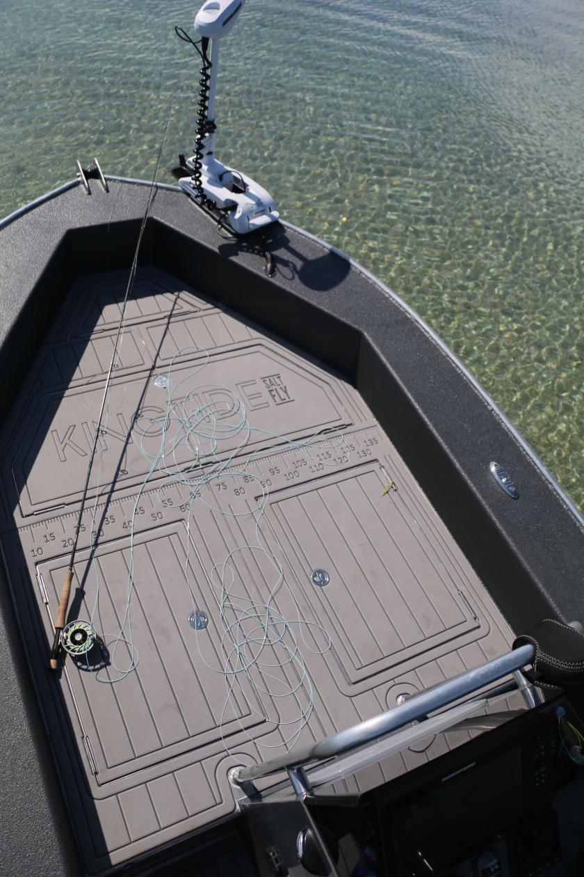 salt water fly fishing, boat, new zealand, fly rod, minn kota, kingfish, snapper, guide, collingwood