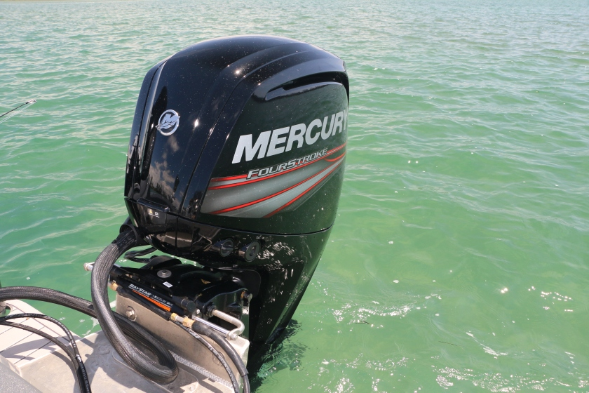 mercury marine, king tide salt fly, fishing boat, fishing guide