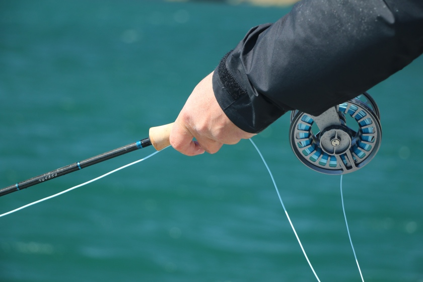 Lamson Cobalt, Scott sector, kingfish, salt water fly, charter, guide, boat, flats, fly rod, fly reel, New Zealand, harbour