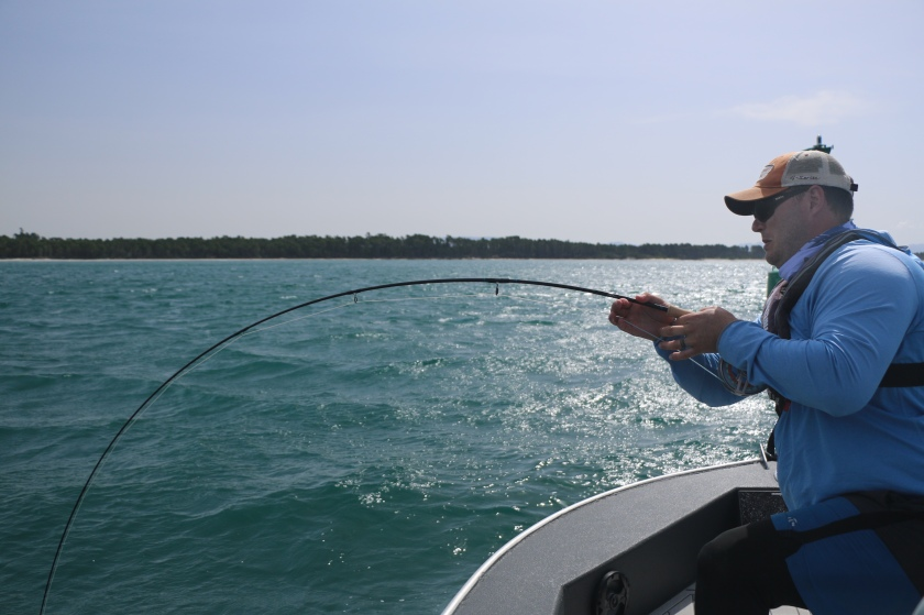 King fish, snapper, fishing, fly rod, New Zealand, salt water, guide, charter boat, sea fishing
