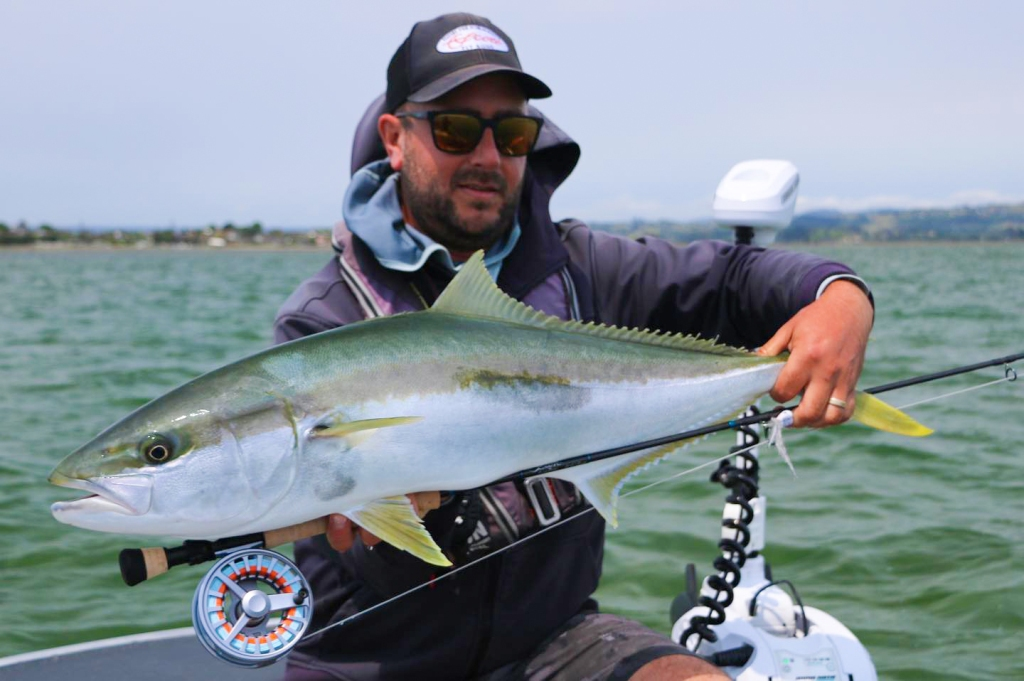 Saltwater Fly Fishing For Kingfish In New Zealand
